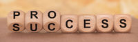 process and success written on wooden cubes
