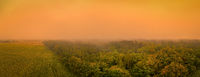 Orange sunrise glow over a foggy forest as aerial panoramic shot from a drone.