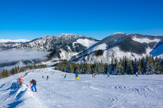 Lots of Skiers on a Wide and Gentle Ski Slope in Sunny Weather