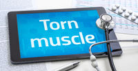 The word Torn muscle on the display of a tablet