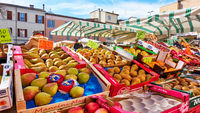 Market counter with various fruits