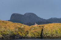 Typical small island on the coast of Norway with red hut and seagulls seen from the sea with scarse vegetation