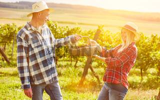 Paar im Weinberg mit Korb für Picknick im Sommer