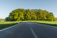 Winding  Country Road  through  Odenwald, Hesse, Germany