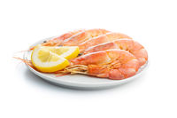 Boiled tiger prawns with lemon on plate. Tasty shrimps.