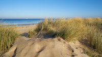 Dune on the beach of Warnemuende on the German Baltic Sea coast