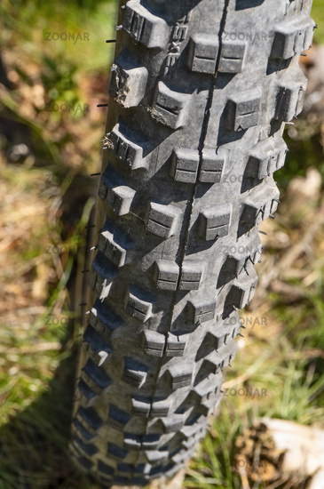 Profile of a mountain bike tire