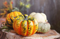 Pumpkins and autumn leaves, selective focus