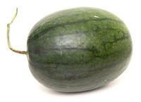 Watermelon on white