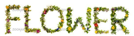 Flower And Blossom Letter Building Word Flower