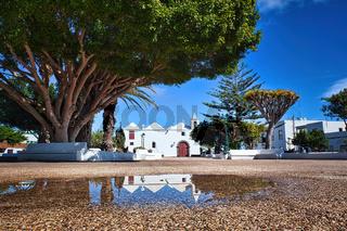 Nach einem Regenschauer spiegeln sich die Häuser im Hintergrund in der Pfütze. Links daneben ein prächtiger Drachenbaum