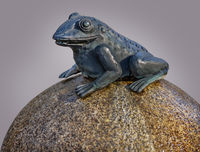 Fountain figure of the Fountain at the Kloster market  in Plauen - Frog on the stone ball