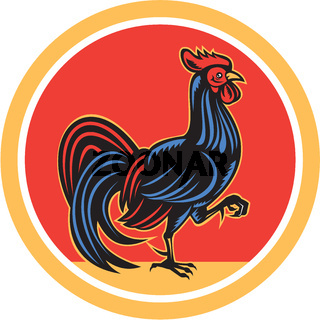 Chicken Rooster Marching Walking Circle Retro