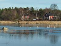 Landscape in Lumparland, Aland, near Svinö