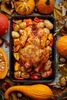 Roasted whole chicken or turkey with pumpkins, pepper and potatoes. With colorful mini pumpkins