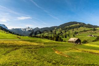 Landschaft mit Almen und Bauernhöfen, Toggenburg, Kanton St. Gallen, Schweiz