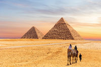 Egyptian Pyramids of Giza and the tourists on a camel