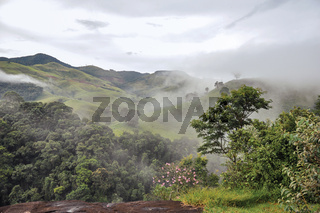 Overview of forest and hills shrouded by mist and clouds