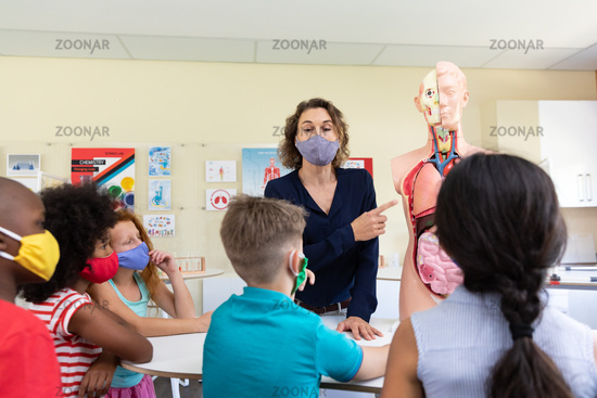 Female teacher wearing face mask using human anatomy model to teach students in class