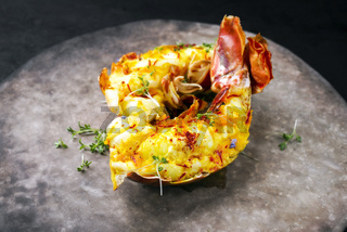 Traditional barbecue spiny lobster tail sliced and offered with saffron lemon sauce as closeup on a rustic modern design plate