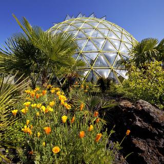 D_Botanischer Garten_02.tif