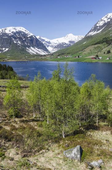 spring, Sogndal, Sogn og Fjordane, Norway