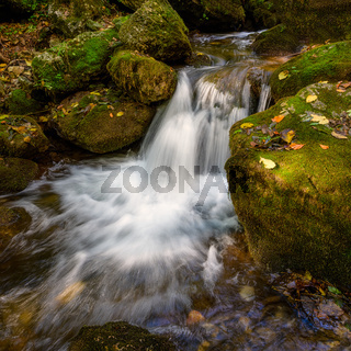 zadielska valley with a picturesque stream and green vegetation