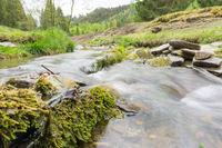 Wiehn stream