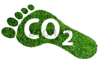 carbon footprint symbol, barefoot footprint made of lush green grass with text CO2