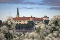 Riga, Latvia. View of Riga Castle and flowering bush foreground