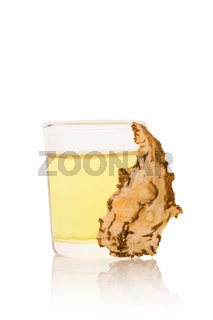 Angelica root slice and tincture isolated on white background.