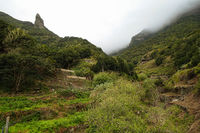 View towards the laurel forest and National Garajonay on La Gomera - taken at El Cedro