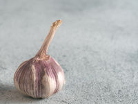 Garlic Bulb on gray cement background