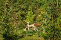 Figurine of a deer