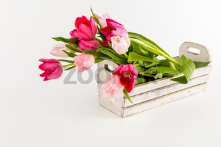 Tulips in a white box