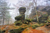 Sandsteinfelsen im Elbsandsteingebirge mit Raureif im Nebel -  Sandstone rocks in the Elbe Sandstone Mountains with hoarfrost in the fog