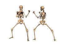 Boxing match between skeletons