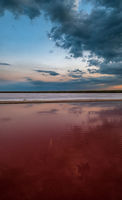 Sunset Genichesk pink  salty lake, Ukraine