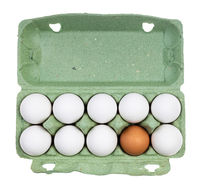 top view of ten chicken eggs in container isolated