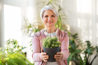 happy senior woman with flower in pot at home