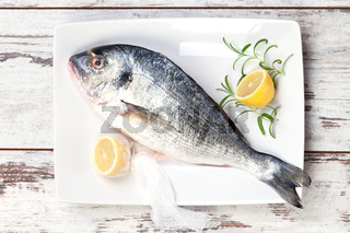 Sea bream with lemon on white tray.