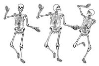 Funny dancing skeletons isolated on white background. Vector illustration, set