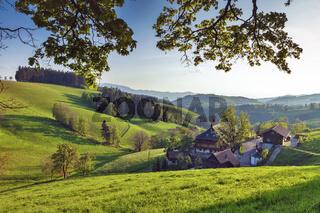 Bauernhof bei St.Märgen im Schwarzwald