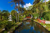 Monte Tropical Garden - Madeira Portugal