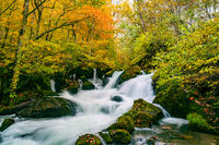 Waterfalls in the Oirase Mountain Stream in colorful foliage of autumn forest