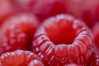 Raspberries, closeup, small depth of field