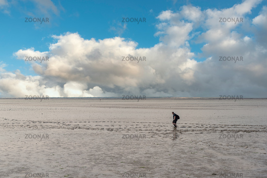 Wadden Sea with mudflat hikers by Bensersiel