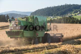 Mähdrescher auf einem Getreidefeld - Ernte im Sommer