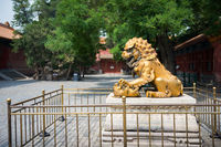 Bronze lion statue in Forbidden Palace in Bejing China