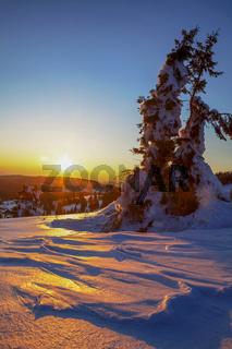 Winterabend am Feldberg im Schwarzwald